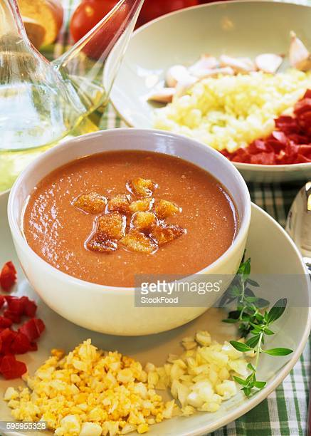 Gazpacho (Cold vegetable soup from Andalusia, Spain)
