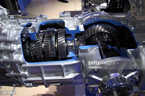 Gears cutaway in transmission