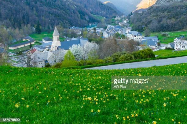Gedre Valley of the Gave de Gavarnie HautesPyrenees department MidiPyrenees region France Europe