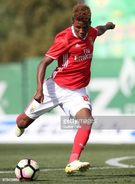 Gedson of SL Benfica B in action during the Segunda Liga match between Sporting CP B and SL Benfica B at CGD Stadium Aurelio Pereira on May 5 2017 in...