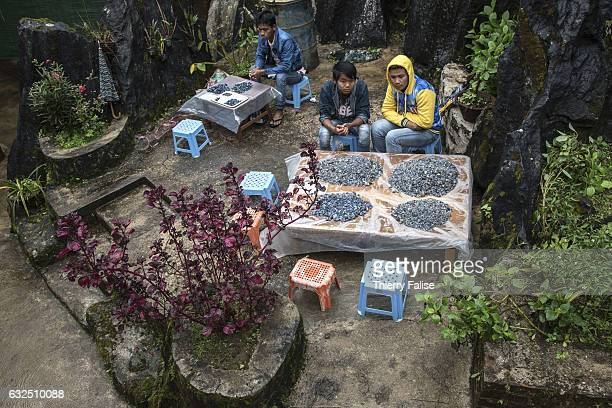 Gem dealers wait for customers during a private sapphire auction organized by a mine owner