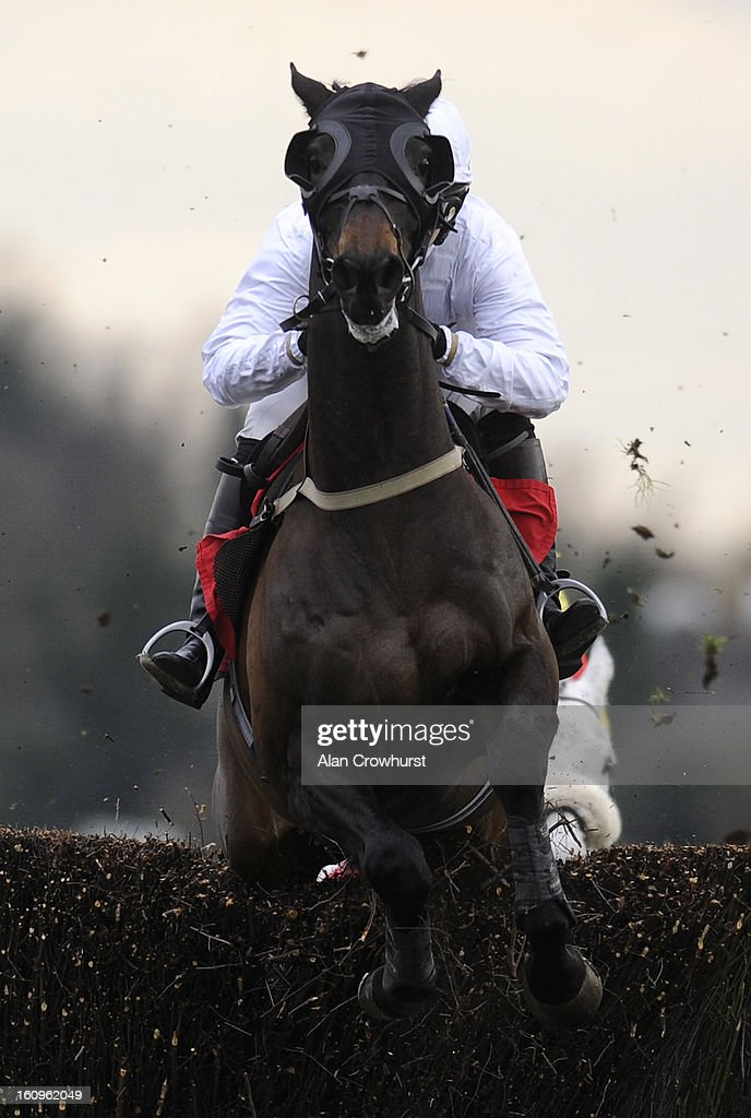 Gemma Gracey-Davidson riding Nozic on their way to winning The Racing Plus Chase Day 23.02.13 Handicap Steeple Chase at Kempton racecourse on February 08, 2013 in Sunbury, England.