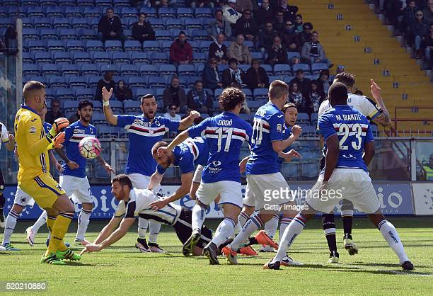 General action during the Serie A match between UC Sampdoria and Udinese Calcio at Stadio Luigi Ferraris on April 10 2016 in Genoa Italy