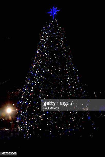 Boston Common Christmas Tree Stock Photos And Pictures Getty Images - Boston Christmas Tree Lighting