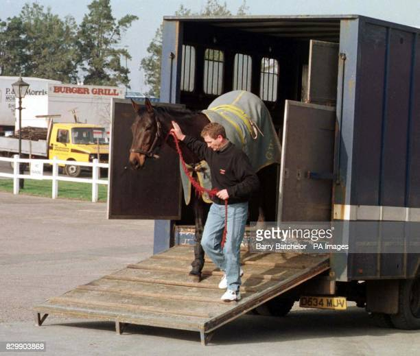 General Command is walked out by Ted Stanners as they arrive at Cheltenham for the three day Festival meeting that starts tomorrow The Gordon...