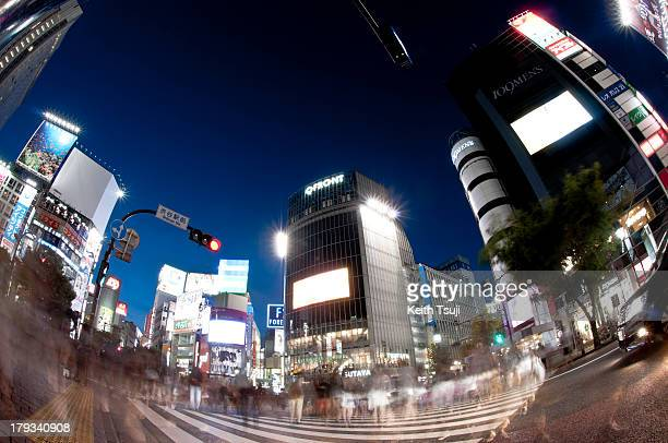 A general night view of Shibuya crossing intersection on August 31 2013 in Tokyo Japan Shibuya is known as one of the fashion centers of Japan and...