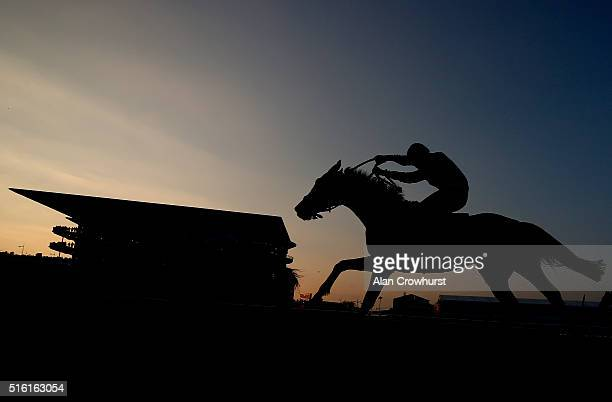 A general view a a runner climbs the hill towards the finish during Cheltenham Festival St Patrick's Thursday at Cheltenham racecourse on March 17...