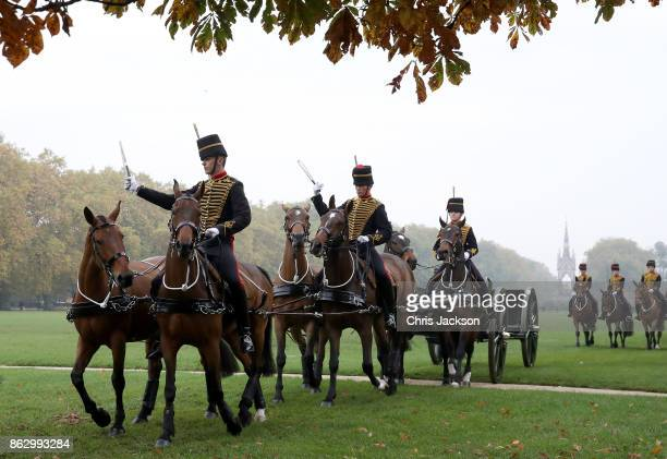 A general view ahead of the Queen Elizabeth II review of the King's Troop Royal Horse Artillery during their 70th anniversary parade at Hyde Park on...