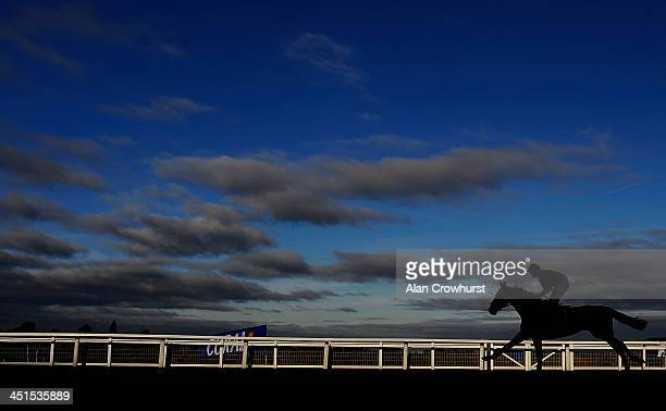 A general view as a runner makes its way down the straight at Ascot racecourse on November 23 2013 in Ascot England