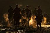 GBR: Newmarket Gallops