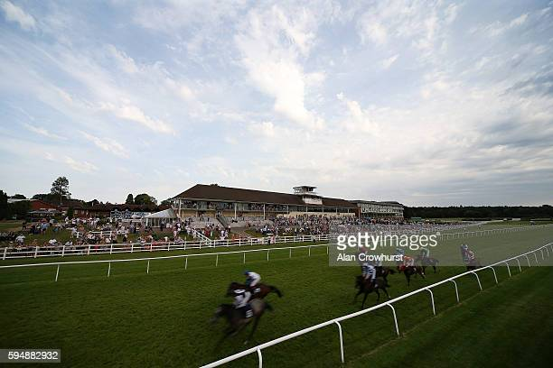 A general view as runners ease down after finishing at Lingfield Park on August 24 2016 in Lingfield England