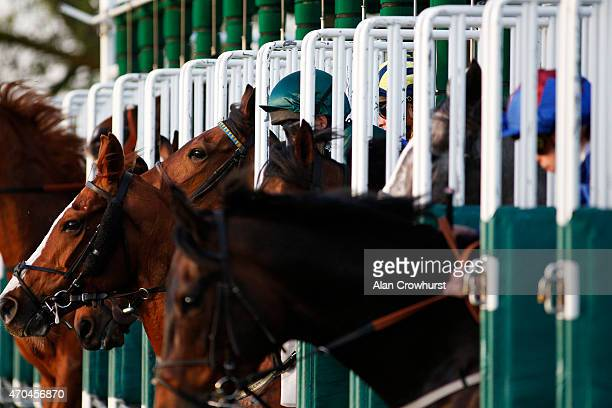 A general view as runners leave the stalls at Windsor racecourse on April 20 2015 in Windsor England