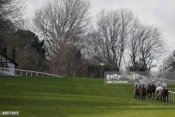 A general view as runners make for the top turn at Sandown Park on February 4 2017 in Esher England