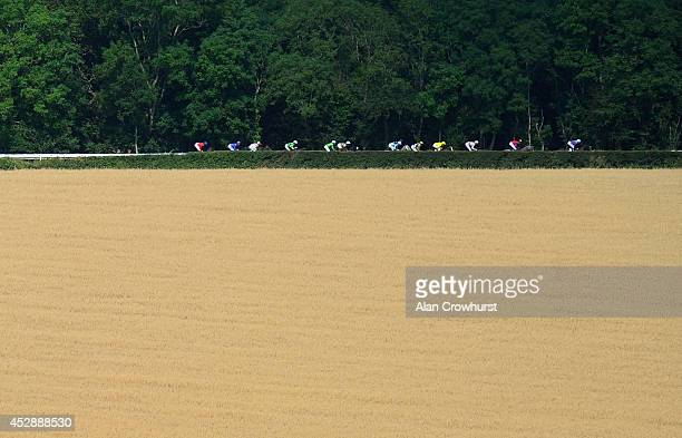 A general view as runners make their way across the back straight at Goodwood racecourse on July 29 2014 in Chichester England