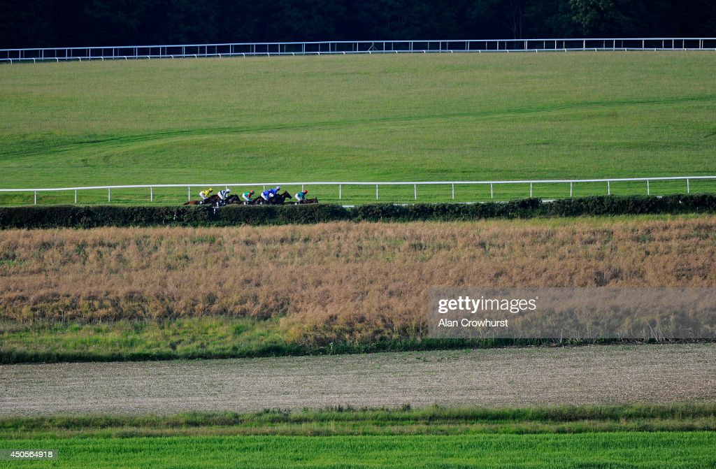 A general view as runners make their way across the middle of the track in The Mazda Jinba Ittai Stakes at Goodwood racecourse on June 13, 2014 in Chichester, England.