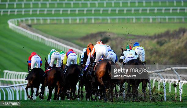 A general view as runners make their way down the back straight at Carlisle racecourse on November 02 2014 in Carlisle England