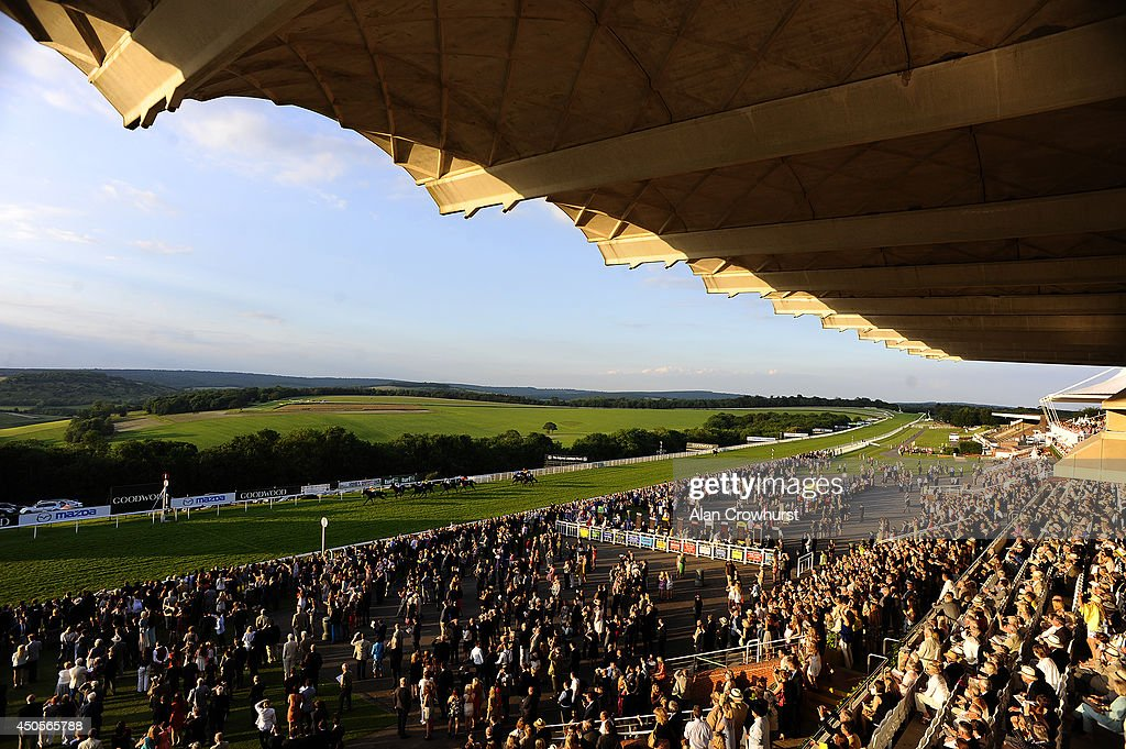A general view as runners near the finish at Goodwood racecourse on June 13, 2014 in Chichester, England.