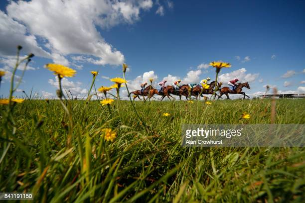 A general view as runners race down the back straight in The Molson Group Handicap Stakes at Bath racecourse on August 31 2017 in Bath England