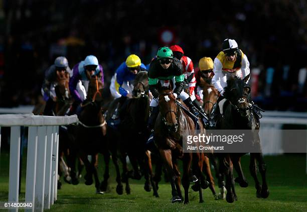 A general view as runners turn away from the grandstands in The Qipco British Champions Lond Distance Cup at Ascot Racecourse on October 15 2016 in...