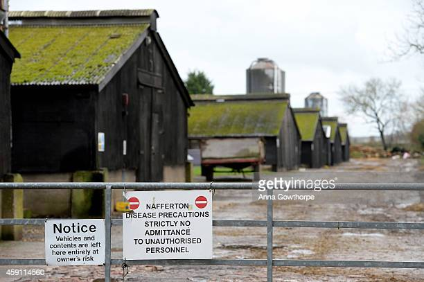 A general view at a farm near Nafferton East Yorkshire where a strain of bird flu has been confirmed on November 17 2014 in East Yorkshire England...