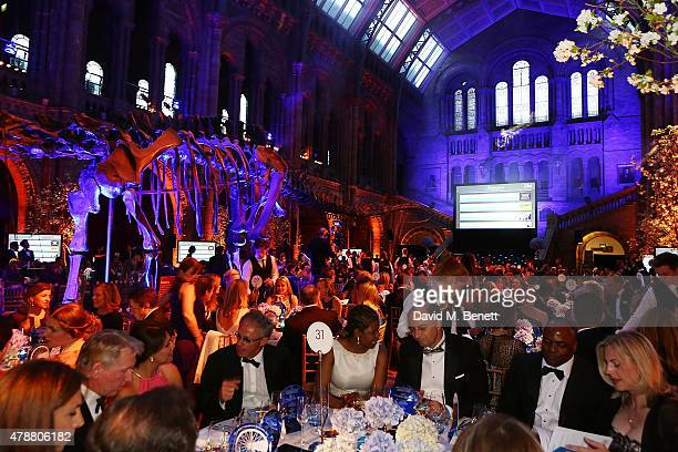 General view at the inaugural Walkabout Foundation gala drinks by Boujis London at Natural History Museum on June 27 2015 in London England