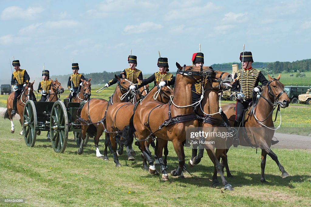 A general view during a Royal Review on the occasion of their Tercentenary at Knighton Down on May 26, 2016 in Lark Hill, England.