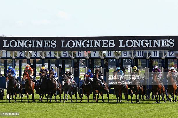General view during Race 6 in the James Boag's Premium Australian Oaks during Queen Elizabeth Stakes Day at Royal Randwick Racecourse on April 9 2016...