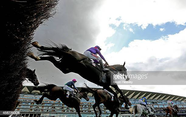 A general view during the Byrne Group Steeple Chase Race at Ascot Racecourse on November 1 2014 in Ascot England