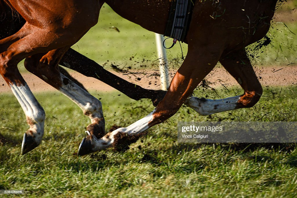 General view horses hoofs kicking up the grass during Grand Annual Day at Warrnambool Race Club on May 5, 2016 in Warrnambool, Australia.