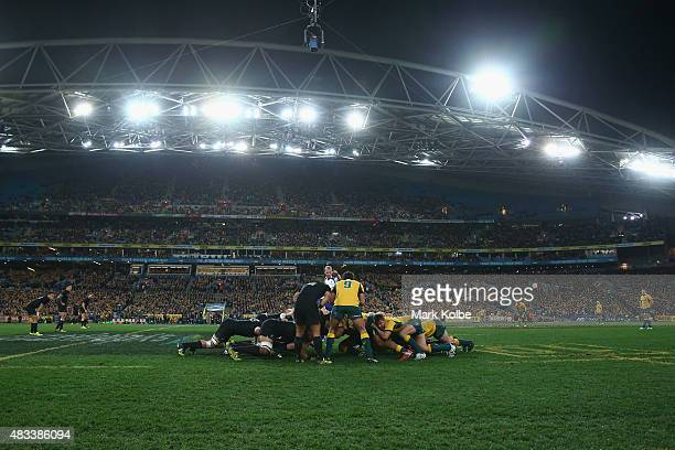 A general view is seen a scrum packs during The Rugby Championship match between the Australia Wallabies and the New Zealand All Blacks at ANZ...