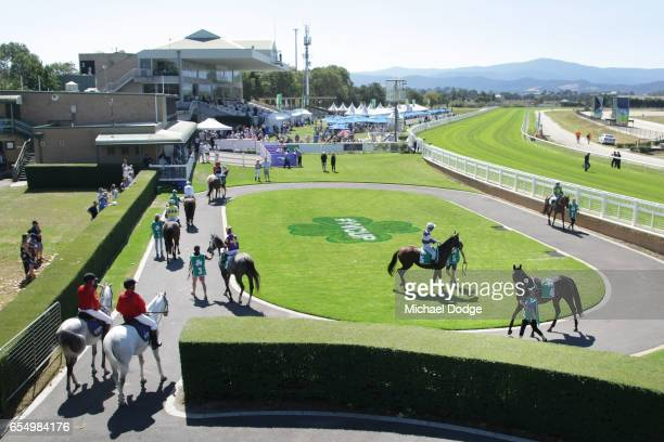 A general view is seen before It's Pa won the Robert Rose Plate at Yarra Valley Racecourse on March 19 2017 in Yarra Glen Australia