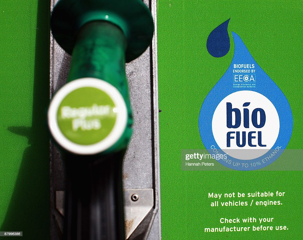 A general view of a biofuel pump at a Gull petrol station as seen on May 27 2009 in Auckland New Zealand Gull is the first petrol station to supply a...