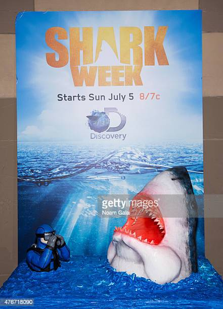 General view of a 'Cake Boss' cake celebrating 'Shark Week' at the Mirror Awards '15 at Cipriani 42nd Street on June 11 2015 in New York City
