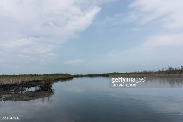 A general view of a creek on April 19 2017 in the Niger Delta region near the city of Port Harcourt NNS Pathfinder of the Nigerian Navy forces are...