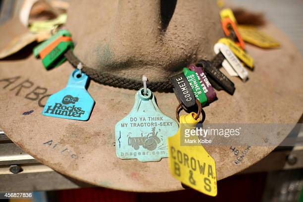 A general view of a festival goer's hat tags are seen on the first day of the 2014 Deni Ute Muster at the Play on the Plains Festival ground on...