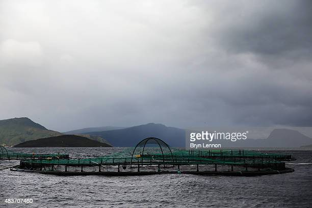 A general view of a salmon farm ahead of the 2015 Artic Race of Norway on August 12 2015 in Harstad Norway