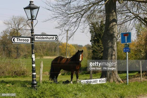A general view of a sign pointing towards the quiet Dorset village of Holdenhurst near Bournemouth where residents have won the right to rename their...