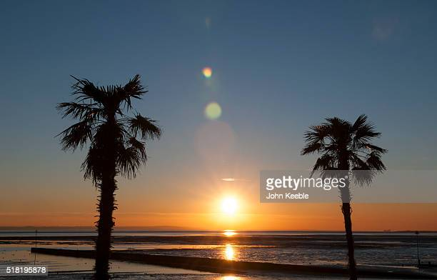 A general view of a silhouetted palm trees at sunset over the Thames Estuary on January January 19 2016 in Southend on Sea England