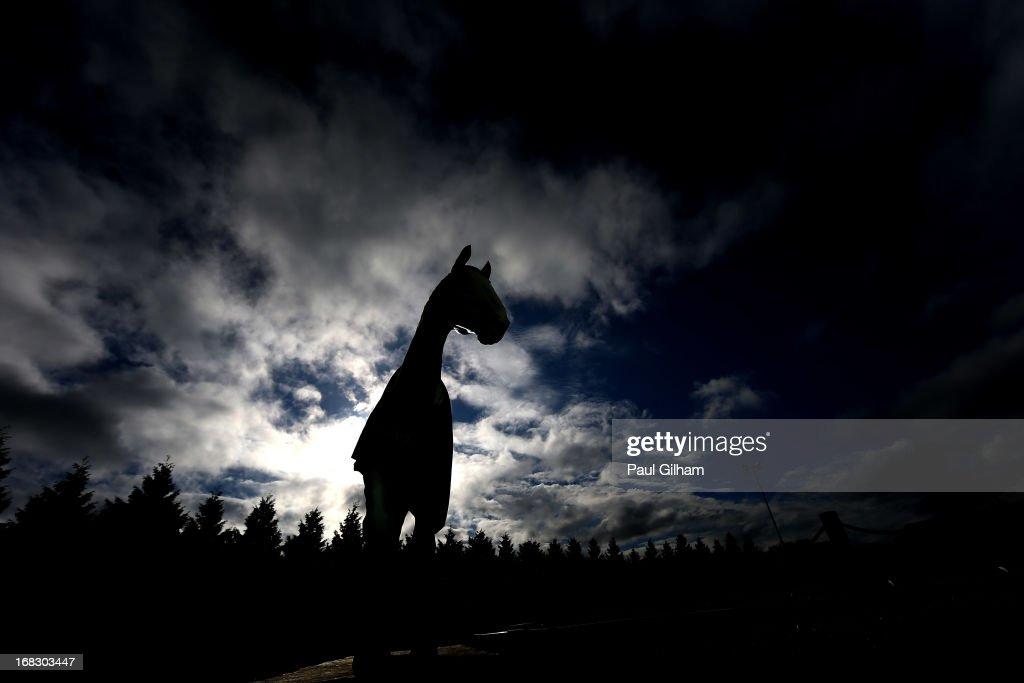 A general view of a statue of the race horse Desert Orchid during evening flat races at Kempton Park on May 8, 2013 in Sunbury, England.