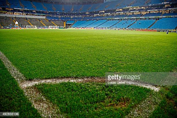 General view of Arena do Gremio field before the match Gremio v Santos as part of Brasileirao Series A 2015 at Arena do Gremio on October 15 2015 in...