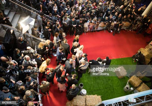 A general view of atmosphere at the German premiere of the film 'Bibi Tina Tohuwabohu Total' at Kino in der Kulturbrauerei on February 19 2017 in...