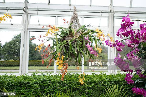 The orchid show chandeliers light ideas light ideas new york botanical gardens stock photos and pictures getty images a general view of atmosphere at mozeypictures Gallery