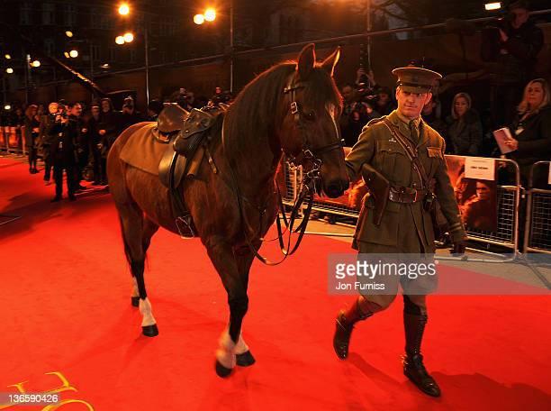war horse meet the filmmakers