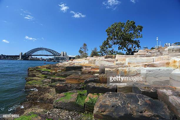 A general view of Barangaroo Reserve on September 11 2015 in Sydney Australia Barangaroo Reserve is Sydney's newest Harbour foreshore park marking...