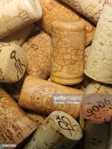 General view of corks from wine bottles before the first budget after the UK lost its prized AAA rating following the recent Moody's downgrade while...