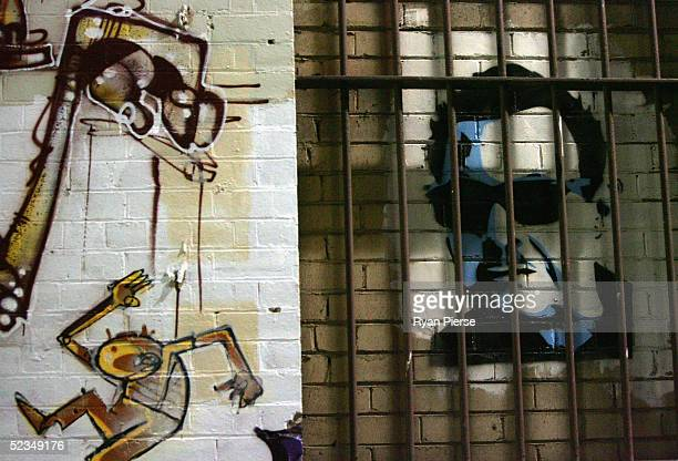 A general view of Crime Walls a laneway installation by Melbourne artist Regan Smith in Hosier Lane on March 10 2005 in Melbourne Australia The art...