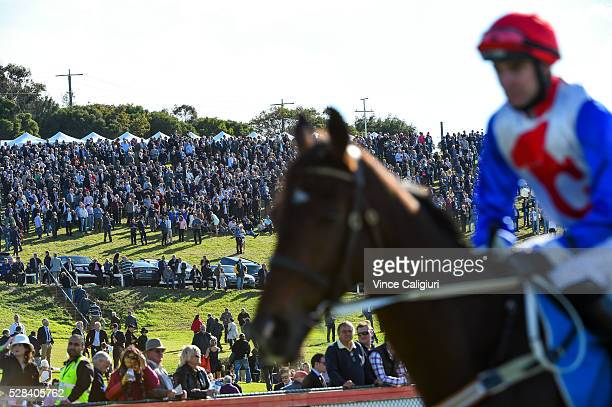 General view of crowd on the hill before winning Race 7 Grand Annual Steeplechase during Grand Annual Day at Warrnambool Race Club on May 5 2016 in...