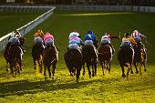General view of field racing down the home straight in Race 9 during Melbourne Racing at Caulfield Racecourse on April 23 2016 in Melbourne Australia