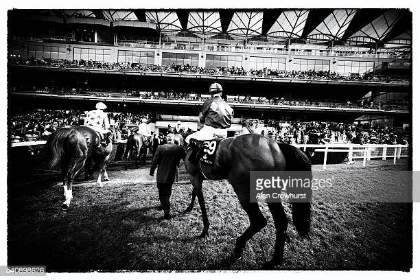 EDITORS NOTE General view of horses being led to the track on day 3 of Royal Ascot at Ascot Racecourse on June 16 2016 in Ascot England