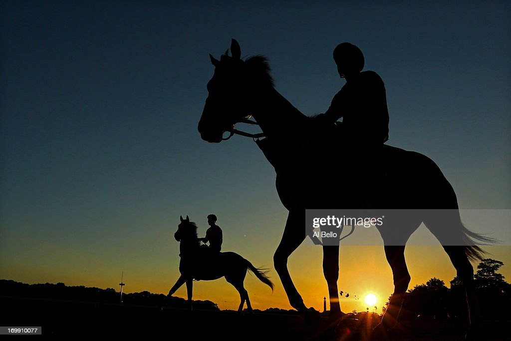 A general view of horses heading out to the track to train at Belmont Park on June 4, 2013 in Elmont, New York.